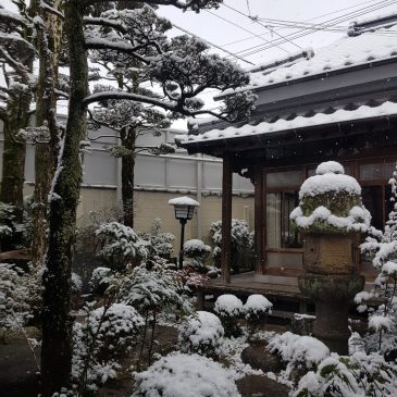 Vivir en Japón, testimonio de nuestros estudiantes: Roser Méndez